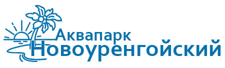 Продвижение корпоративного сайта + магазина Новоуренгойский Аквапарк